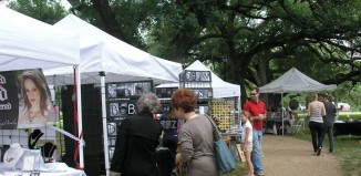 midtown-art-in-the-park-2014-houston-texas