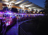 hermann-park-holiday-train-2014-holiday-lights