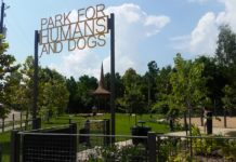 park-for-humans-and-dogs-houston-2