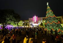christmas-light-tours-greater-houston