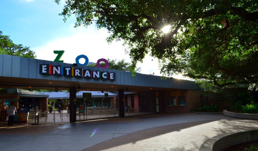 visitors-guide-houston-zoo-3