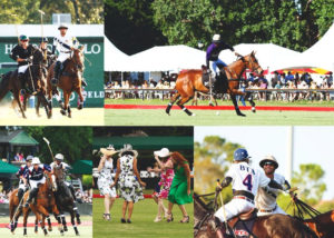 houston-polo-club