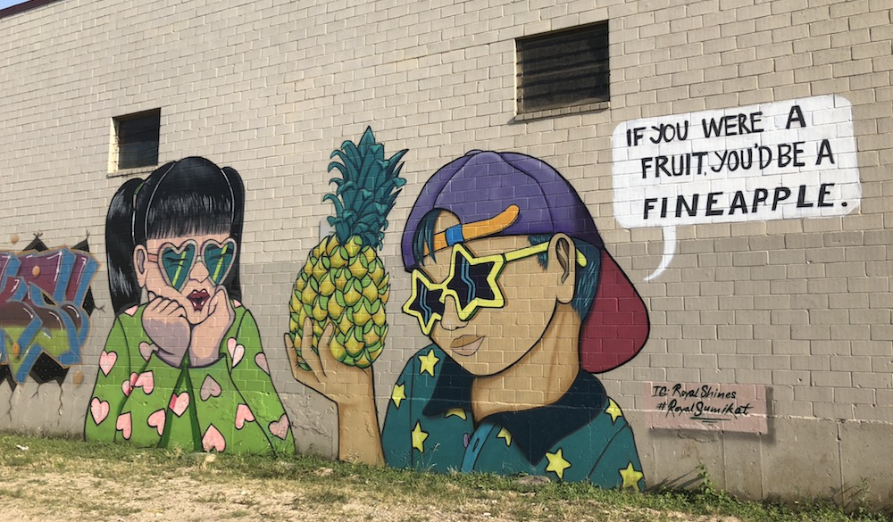 fineapple-mural-houston-1