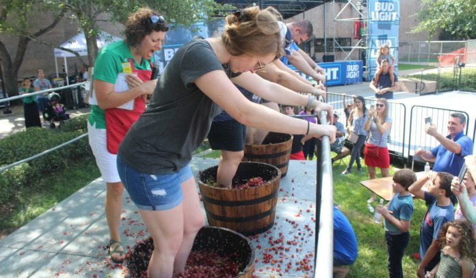 houston-italian-festival-festa-italiana-2018-grapes