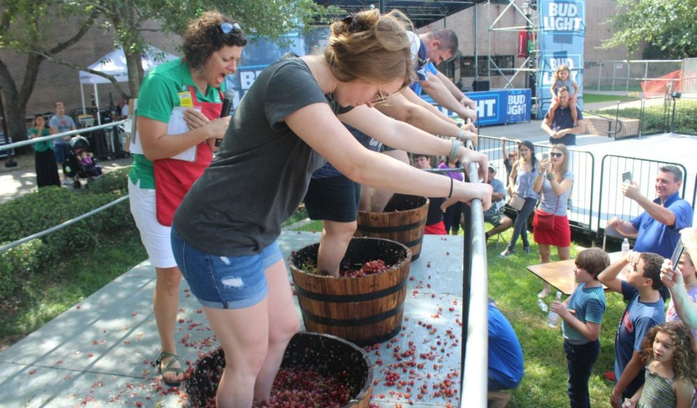 houston-italian-festival-festa-italiana-2019-grapes