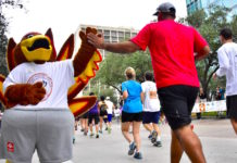 top-things-to-do-thanksgiving-week-houston-2018