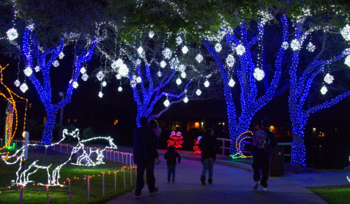 A family walks through trees lit with blue Christmas lights
